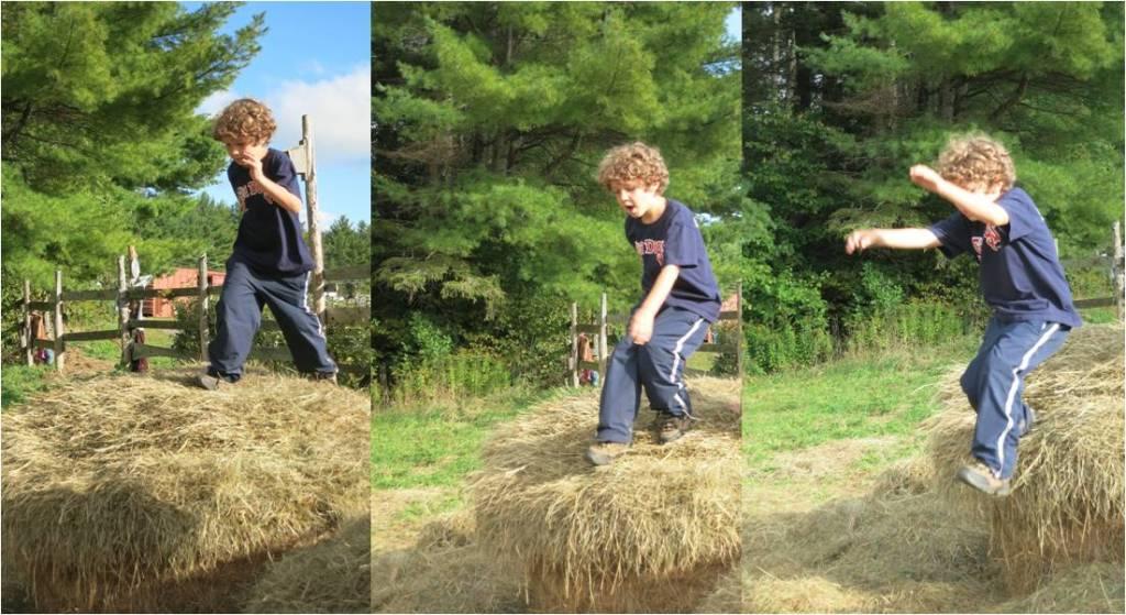 Common Ground Fair Hay Jumping