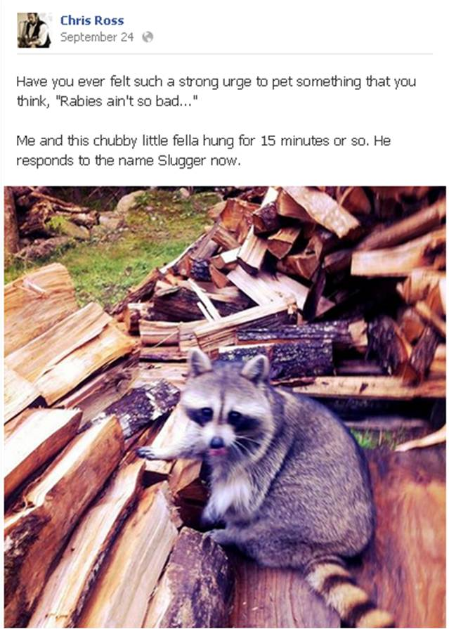 Chris Ross FB Raccoon