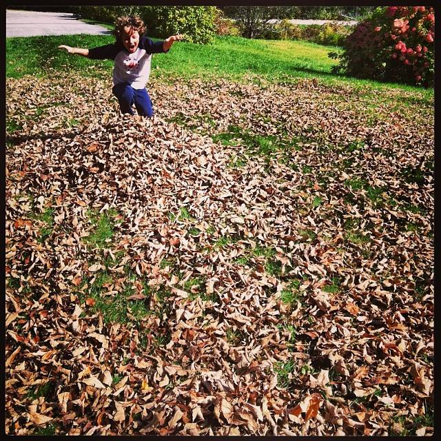 Ethan leaves 10-11-2013