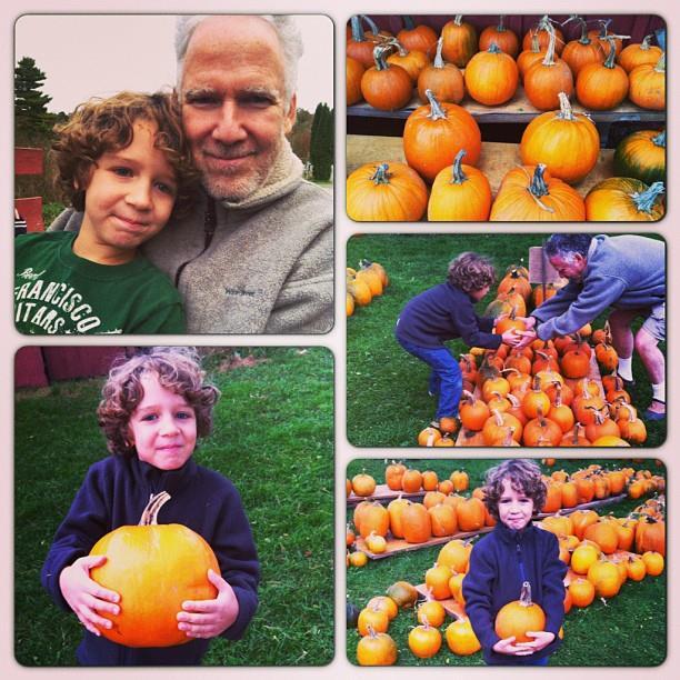 Pumpkins 10-06-2013