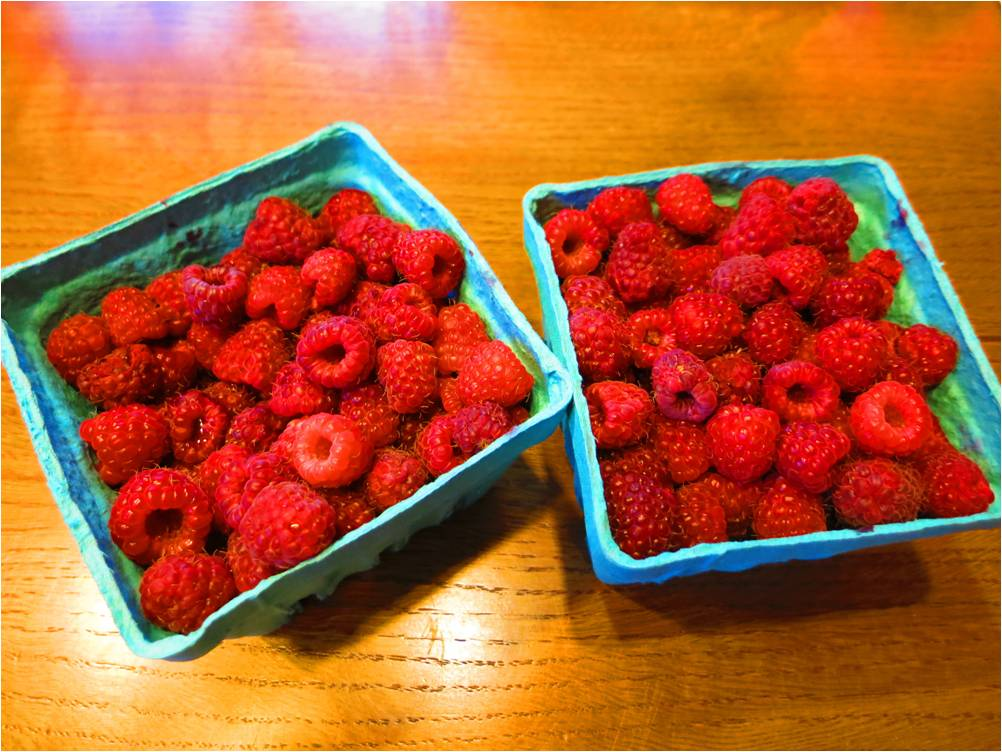 Raspberries 2014 - Letter Size