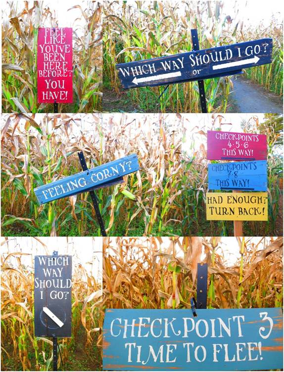 Corn Maze Signs - Letter Size