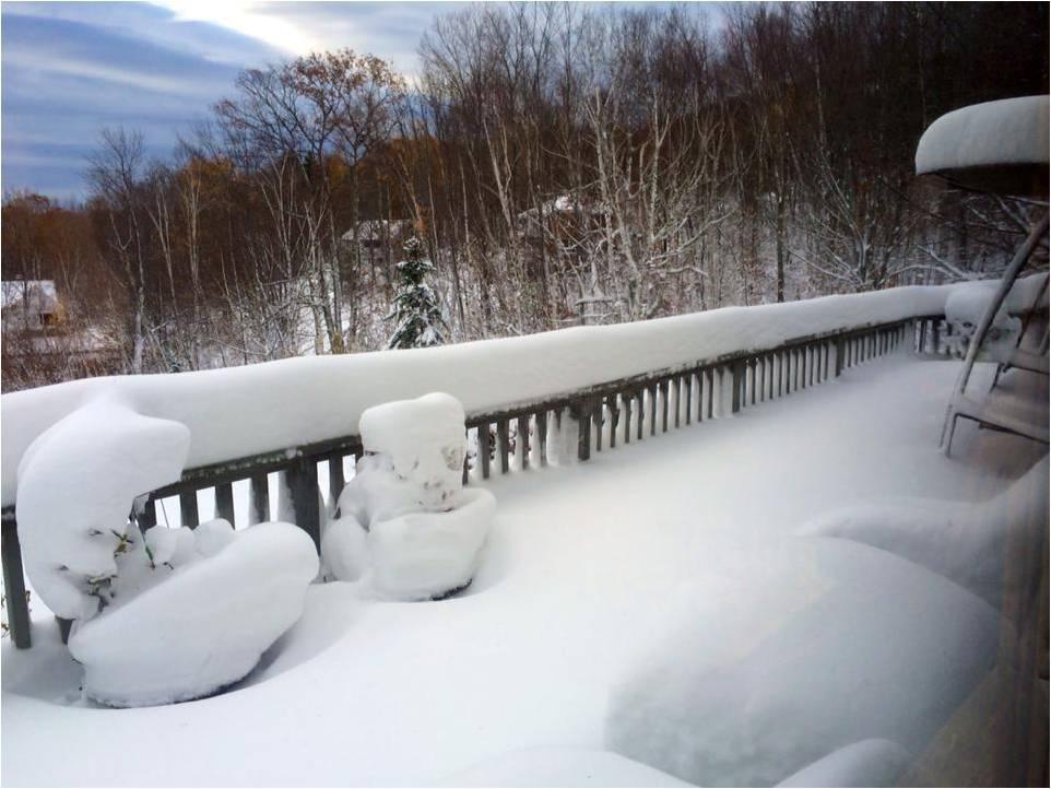 Snow Deck 2014 - Letter Size