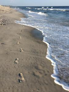 LBI footprints 08-16-2015