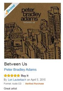 Peter Bradley Adams Between Us