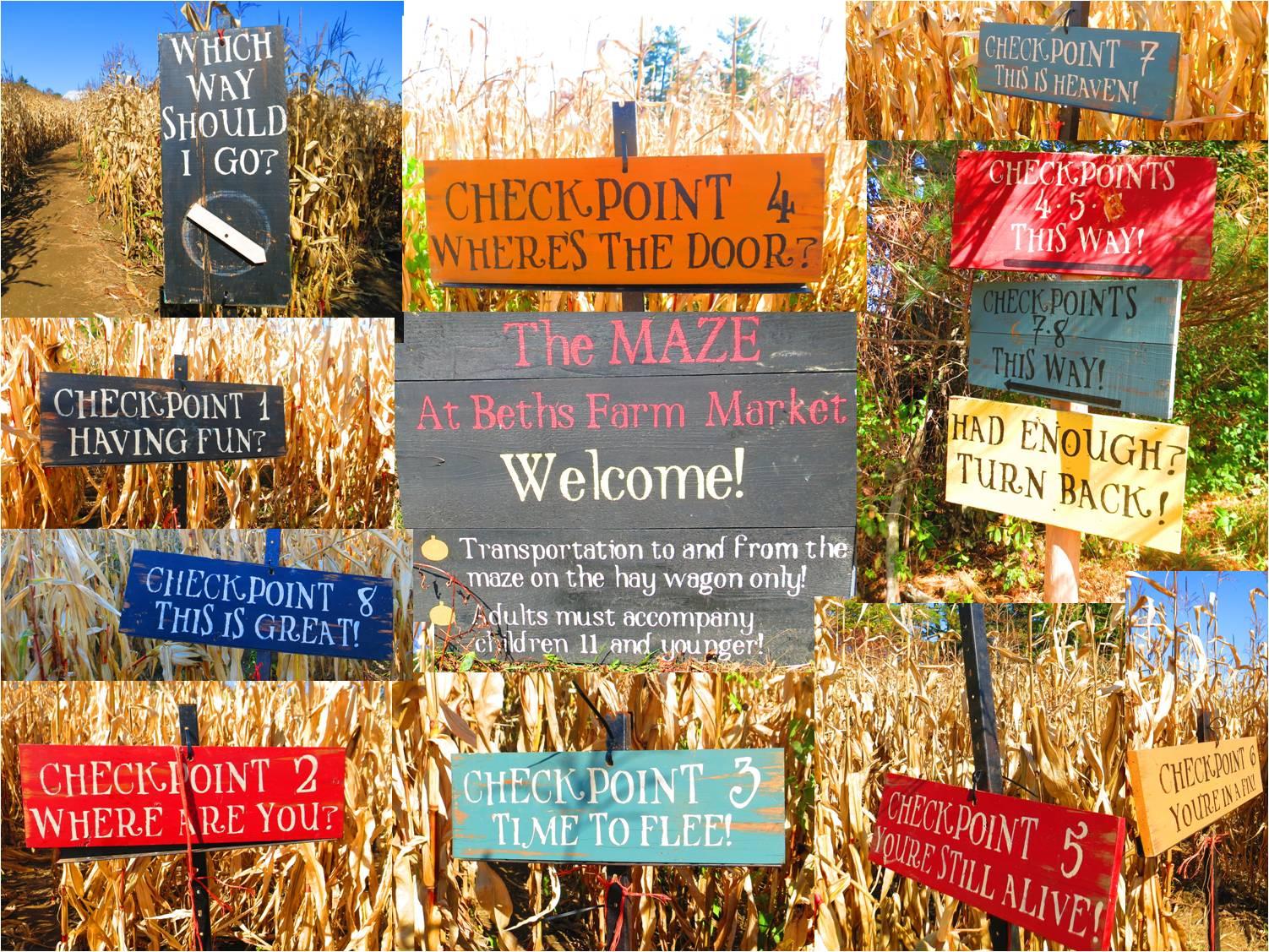 Beth's Corn Maze 2015